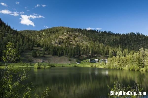d60860abff5a78f4f9c799ff6c9022d8 Ngôi nhà đá được bao quanh bởi những rừng cây xanh mát