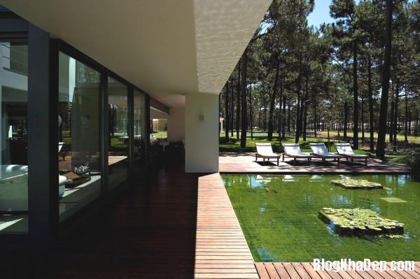 273cd6eef84f754bd6f365c2571080cf Ngôi nhà hiện đại lọt thỏm giữa thiên nhiên xinh đẹp và quyến rũ