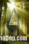 372130 a Ngôi nhà độc đáo trong rừng
