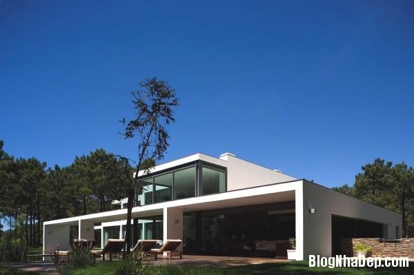 bea7c6ad05754f60e4872595f649da33 Ngôi nhà hiện đại lọt thỏm giữa thiên nhiên xinh đẹp và quyến rũ
