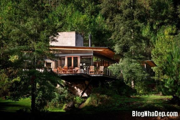 468576acee7f7d9f373353cd6a0635ac Ngôi nhà gỗ thoáng mát tiện nghi nằm giữa rừng
