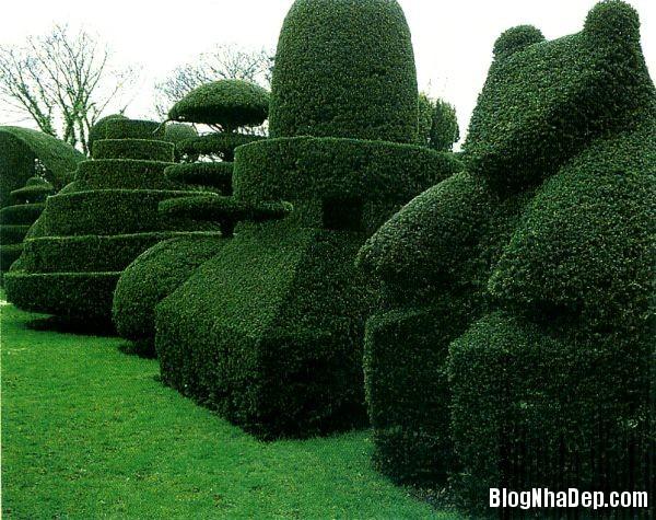00cba7c33712fa4cc1b95c0cda5f6250 Hàng rào cây xanh yên tĩnh và xanh mát