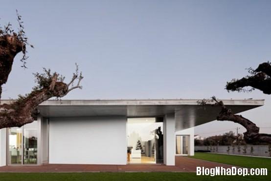 3f99e799fbea77c7841db0b69adbd2bf Ngôi nhà ấn tượng với thiết kế minimalist ở Bồ Đào Nha