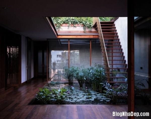 3e536248aca9dc03aa14827038a3c28d Ngôi nhà miền quê bình yên với hồ sen trong nhà