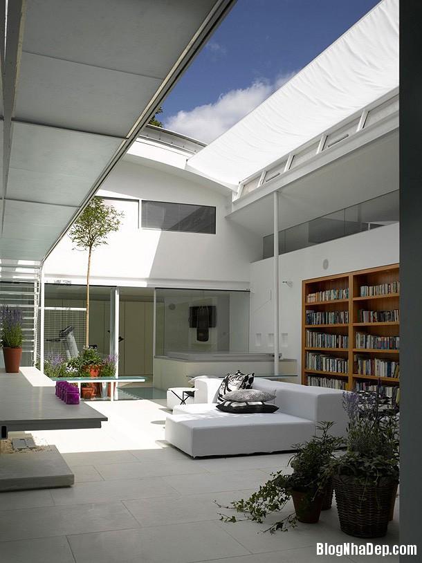 e4b4ccbe5e9d89c431f7b242c8201dd0 Ngôi nhà bằng kính với thiết kế không gian mở hiện đại và thoáng đãng