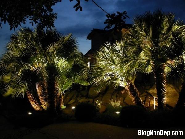 192b1f21767196859edc1146b04e9f92 Bố trí hệ thống chiếu sáng lung linh huyền ảo cho khu vườn
