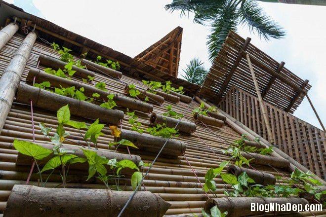 20140424083926117 Ngôi nhà tre 1 tầng với thiết kế chống lụt ở Hà Nội