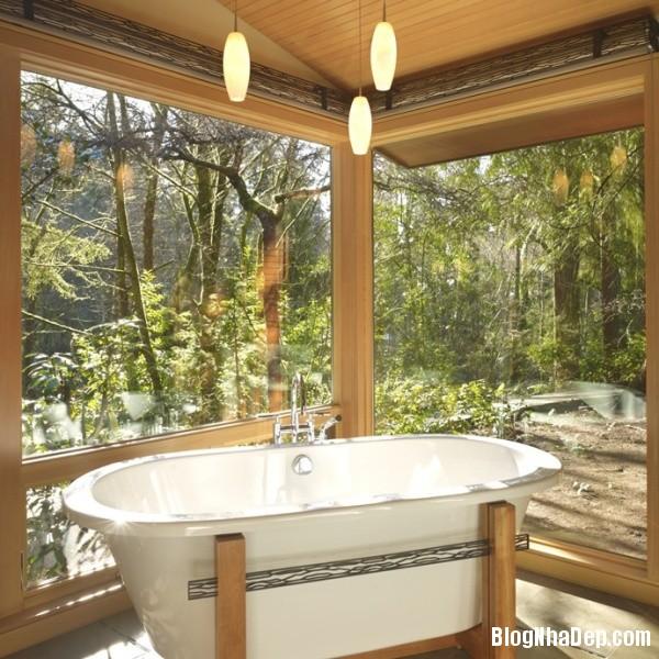 8526bb1dbbcba0903e8f2668db38ee7a Những mẫu phòng tắm trong suốt với kính