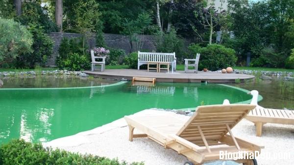 813f74fd2857eda2d55f372b1d6f8d15 Thiết kế hồ bơi có hệ thống lọc nước thông minh