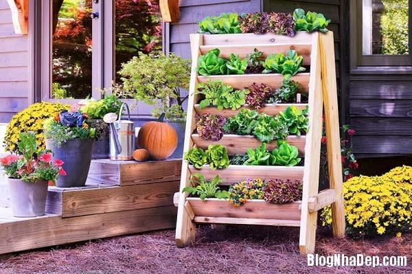 image005 Bí quyết mang khu vườn thảo mộc vào nhà