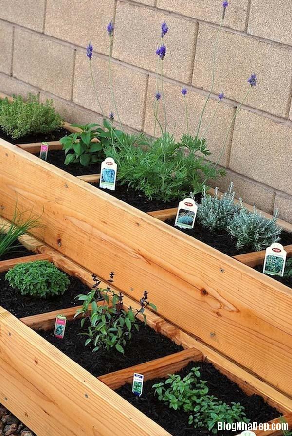 image010 Bí quyết mang khu vườn thảo mộc vào nhà